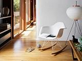 Wettbewerbspreis: Eames Plastic Armchair RAR (limitierte Edition) von Vitra